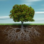 articole_Tree-with-Roots-e1367263221857